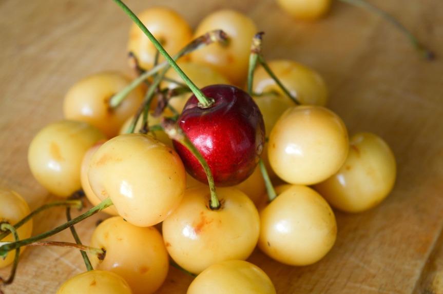 cherry-1484247_1280